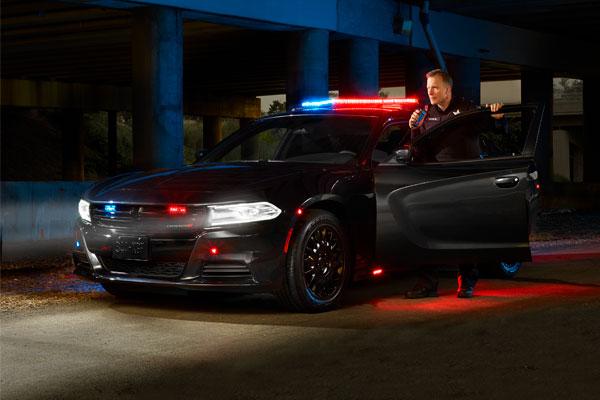 Police Solution Pathfinder Ad Block